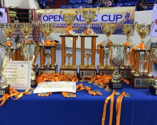 Результаты «Open Baltic Cup 2018»