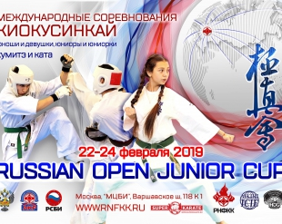 "Пакет документов к ""Russian Open Junior Cup"""